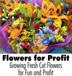 Flowers for Profit: Growing Fresh Cut Flowers for Fun and Profit