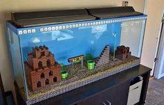 Super mario fish tank!!!