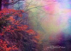 Surreal Mist 11July2016 by MSchmidtArtwork.deviantart.com on @DeviantArt