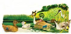 """Гадкий_утенок_5 . Гадкий утенок спрашивал их не знают ли они уток с серыми перьями как у него, он хотел выяснить кто же он все-таки такой. Но и там все местные утки смотрели на него с презрением и отвечали: """"Мы никогда в жизни не видели никого страшнее, чем ты."""""""