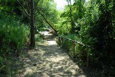 The access trail to Fonte Nuova
