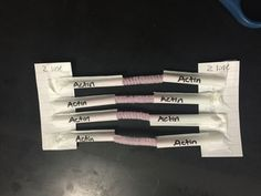 During the Muscle Tissue unit, my advanced seniors and juniors often need a quick break from lecture to apply the content. While learning about sarcomeres (one of the most complex of all topics in A&P in my opinion), I give students a 10-minute break to make their own sarcomere (using pipe cleaners, a straw, and a notecard) to understand the way a sarcomere moves using actin and myosin.