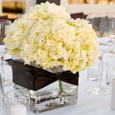 Real Weddings - A Rustic Wedding in Napa, CA - White Hydrangea Centerpieces White Hydrangea Centerpieces, Small Centerpieces, Wedding Centerpieces, Wedding Decorations, White Hydrangeas, Wedding Ideas, White Flowers, Centerpiece Ideas, Wedding Tables