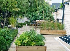 Bed kantet med buksbom - Stor plass i liten hage - Bo-Bedre.no