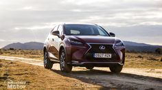 Prueba Lexus NX 300h F Sport, motor, conducción y consumos - http://www.actualidadmotor.com/prueba-lexus-nx-300h-f-sport-motor-consumos/