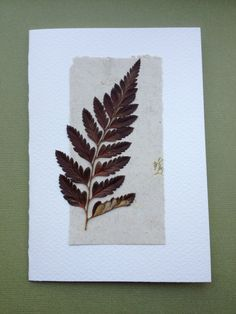 Handmade Card Pressed Fern Leaf #junejewels
