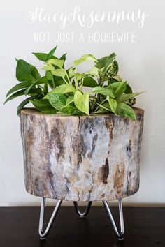 There's a bit of work involved in recreating this pretty log planter, but the effect is totally worth it. It has a rustic, natural look combined with a cool, contemporary vibe. -- Modern Log Planter: Not Just a Housewife. Tree Stump Planter, Log Planter, Tree Stump Table, Tree Stumps, Tree Stump Decor, Tree Logs, Diy Wood Planters, Planter Ideas, Succulent Planters