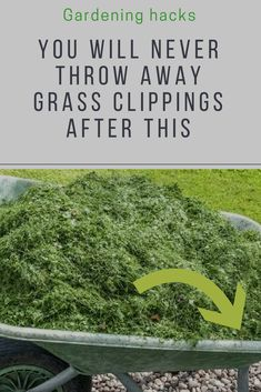 9 things to do with grass clippings you probably never thought of garden ideas gardening ideas gardening for beginners gardening design gardening tools gardening hacks gardening and landscape gardens and gardening ideas lawn care for beginners Organic Gardening Tips, Gardening Hacks, Gardening Tools, Flower Gardening, Gardening Courses, Gardening Services, Gardening Quotes, Container Gardening, Bucket Gardening