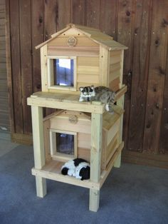 Townhouse Cat House - Custom Dog & Cat Houses by Blythe Wood Works Outdoor Cat Shelter, Outdoor Cats, Outside Cat House, Insulated Cat House, Cat House Diy, Cat Enclosure, Feral Cats, Feral Cat Shelter, Cat Shelters