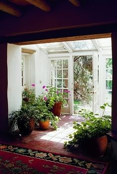 Lots of plants and light, terra cotta tile entry