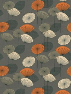Sanderson's+Dandelion+Clocks++is+taken+from+the+Options+10+wallpaper+collection.