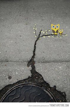 A simple crack on the ground can become art…