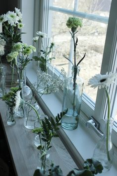 Pretty garden bits in so many shapes of clear glass Interior Styling, Interior Design, Beautiful Lights, More Pictures, Clear Glass, Glass Vase, Reception, Indoor, Curtains