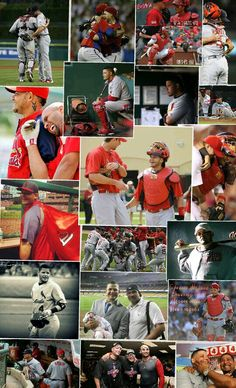 Yadi collage. My fav is the pic with Albert laughing and leaning on his back.