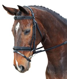 The Collegiate Padded Headpiece Patent Flash Bridle is a stylish Hanovarian bridle with patent piping and padded headpiece. This bridle is made from the finest quality leather with highly polished stainless steel fittings and comes with soft padded reins. Equestrian Supplies, Stainless Steel Fittings, Horse Bridle, Online Discount, Saddles, Headpiece, Pony, Horses, Leather