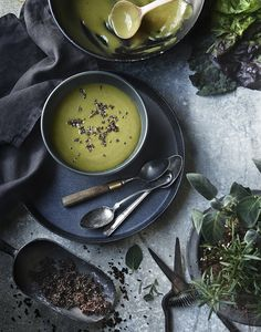 spinach soup | food styling tami hardemann | photo greg dupree | prop styling ginny branch