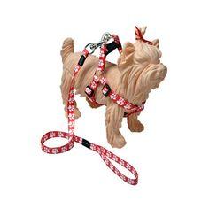 Peitoral E Guia Mod 8 - Patas - Vermelha - Multipatas - MeuAmigoPet.com.br #petshop #cachorro #cão #meuamigopet