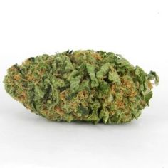 Northern Lights Hybrid is an indica-dominant hybrid that sprouts wide, chunky nuggets with large calyxes, long leaves. Cannabis Vape, Buy Cannabis Seeds, Cannabis Growing, Medical Marijuana, Cannabis Plant, Buy Edibles Online, Buy Weed Online, Autoflowering Seeds