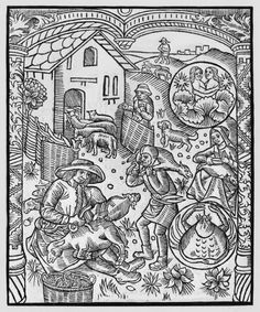 June, sheep shearing, Gemini, illustration from the 'Almanach des Bergers', 1491 by Pierre Le Rouge