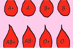 There have been a few scientific research studies on the relation between blood type and traits of a human. Some of these researches, especially those coming from Japan have claimed that there's closer relation between the blood type of a person...