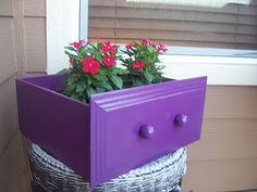purple drawer planter