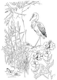 pippa-rossi-lost-garden-stork-and-frog.jpg (942×1313)