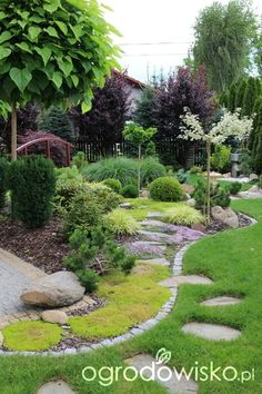 Front Yard Garden Design, Front Garden Landscape, Cottage Garden Design, Outdoor Garden Decor, Outdoor Gardens, Small Gardens, Evergreen Landscape, Large Backyard Landscaping, Shade Garden