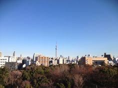 A happy new year from Tokyo.Tuesday, January 1, 2013.