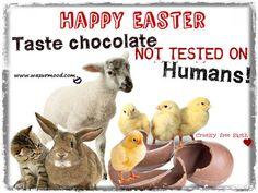 Happy Easter. Taste chocolate not tested on humans. Cruelty free Earth. www.wazurmood.com