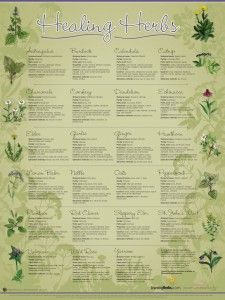 This is a great site for learning more about herbs!