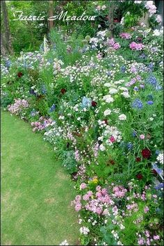 Affordable And Effective Cottage Garden Designing Methods For Your Home Your home is your world, and much like the world around us, looks are important. Back Gardens, Small Gardens, Outdoor Gardens, Indoor Garden, Rose Garden Portland, Garden Design Plans, Cottage Garden Plants, English Country Gardens, French Country