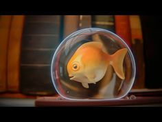CGC Classic: Rendering a Goldfish (Blender 2.6) - YouTube