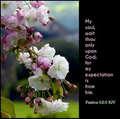 "My Expectation Is From Him  ""My soul, wait thou only upon God; for my expectation is from him.""   [Psalms 62:5]  It is the believer's privilege to use this language. If he is looking for aught from the world, it is a poor ""expectation"" indeed. But if he looks to God for the supply of his wants, whether in temporal or spiritual blessings, his ""expectation"" will not be a vain one. Constantly he may draw from the bank of faith, and get his need supplied out of the riches of God's…"