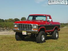 1978 Ford Bronco | Bronco and blueberries