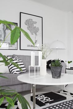 STYLIZIMO BLOG: Decorating tips: Green Plants