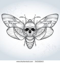 Find Deaths Head Hawk Moth Acherontia Atropos stock images in HD and millions of other royalty-free stock photos, illustrations and vectors in the Shutterstock collection. Bone Tattoos, Body Art Tattoos, Sleeve Tattoos, Tattoo Sketches, Tattoo Drawings, Tattoo Care Instructions, Moth Tattoo Design, Moth Drawing, Tattoo Flash