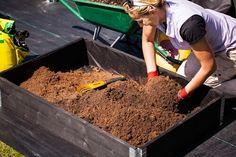 Bättre odlingsresultat med pallkragar http://www.kronus.eu/se/blog/artiklar/battre-odlingsresultat-med-pallkragar