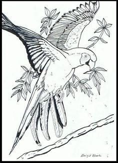 146 Best A4 ActivityCraft Birds Images On Pinterest