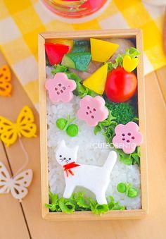 白ネコちゃんのお弁当 - ◆きょうのおべんとう*キャラ弁&デコスィーツ◆