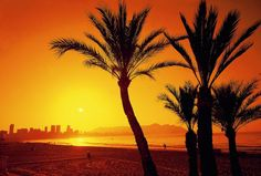 #Benidorm ¡nos encanta esta foto! Hotel Centro, Mother Nature, Image Search, Beautiful Places, World, Awesome, Pictures, Outdoor, Sunsets