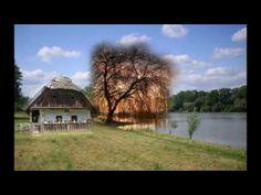 Solti Károly : Van egy ház a Tisza - parton