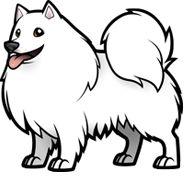 Cartoonize my Japanese Spitz Husky Drawing, Cute Dog Drawing, Cartoon Dog, Cartoon Drawings, Animal Drawings, Animal Outline, Spitz Dogs, Japanese Spitz, Dog Coloring Page