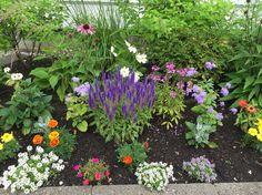 ❤️ Nature Spirits, Flowers Nature, Plants, Beautiful, Beauty, Plant, Beauty Illustration, Planets