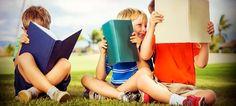 Em defesa do Ensino de Literatura