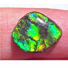 Ammolite Imperial Double Sided Loose Stone 27IMLS$109.99#ammolite #korite #ammonite #fengshui #canada #canadagems #canadianammolite #gemstones #jewelry #jewelryaddict #photooftheday #jewelryoftheday #jewelrygram #colorful #gem #gems #opal #minerals #natureinspired #rainbow #alberta #fossil #Alaska #followersofinstagram #isellrocks #art #handmade #lapidary #madeinmontana #ammolitejewelry Ammolite Jewelry, Ammonite, Feng Shui, Montana, Alaska, Fossil, Minerals, Opal, Canada