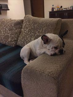 Rest time for Figo