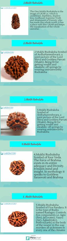 Rudraksha is thought to be the most intense indication of the Cosmic Force. Consequently Rudraksha is the object of love furthermore the source to achieve the higher self. These dots are the seeds of the Rudraksha organic product got from Rudraksha trees.