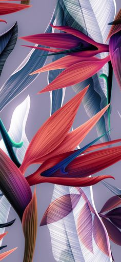 awesome tropical free wall art design and decor ideas 41 Floral Wallpaper Iphone, Pink Wallpaper, Aesthetic Iphone Wallpaper, Colorful Wallpaper, Flower Wallpaper, Screen Wallpaper, Mobile Wallpaper, Aesthetic Wallpapers, Wallpaper Backgrounds