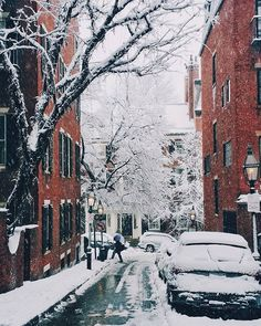 Missing this snowy day already. ❄❄