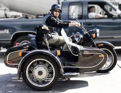 Sidecar Dog    http://dogsiteworld.com/